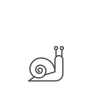 Lumache